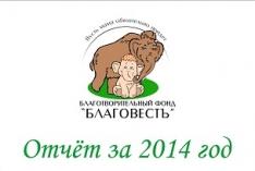 Отчет за 2014 год