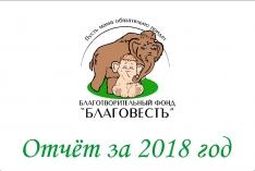 Отчет за 2018 год